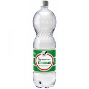 Минеральная вода «Боровая» лечебно-столовая сульфатно-кальциевая